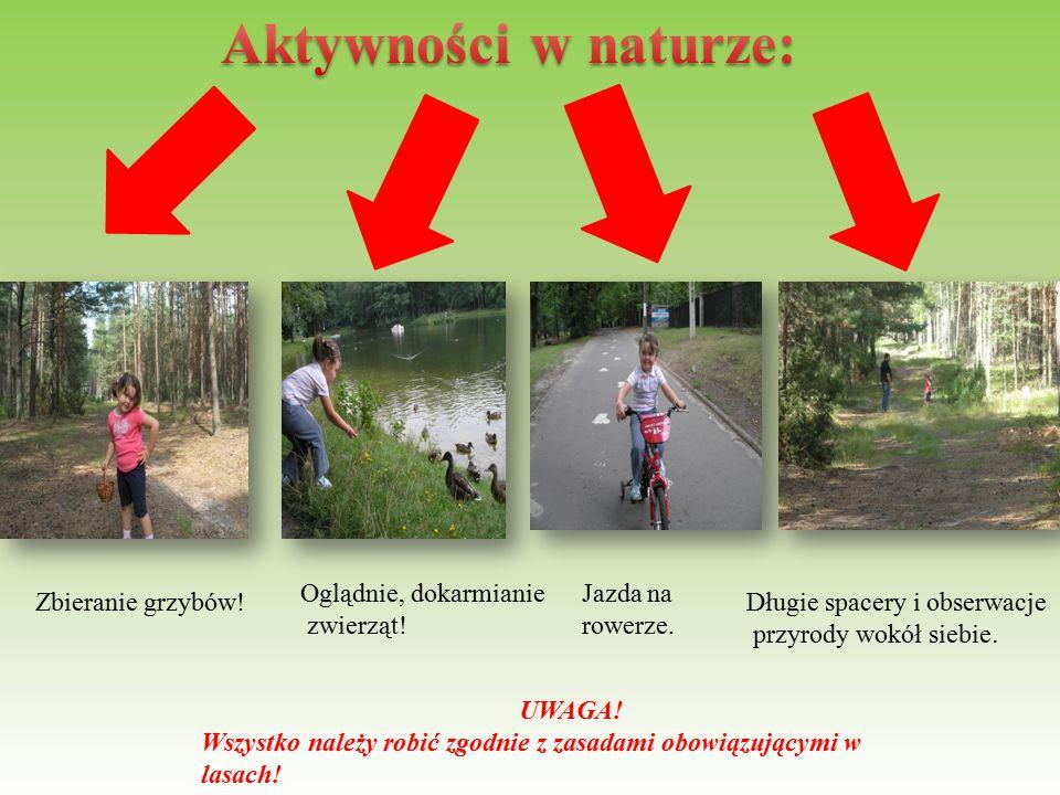 Zbieranie grzybów! Oglądnie, dokarmianie zwierząt! Jazda na rowerze. Długie spacery i obserwacje przyrody wokół siebie. UWAGA! Wszystko należy robić z
