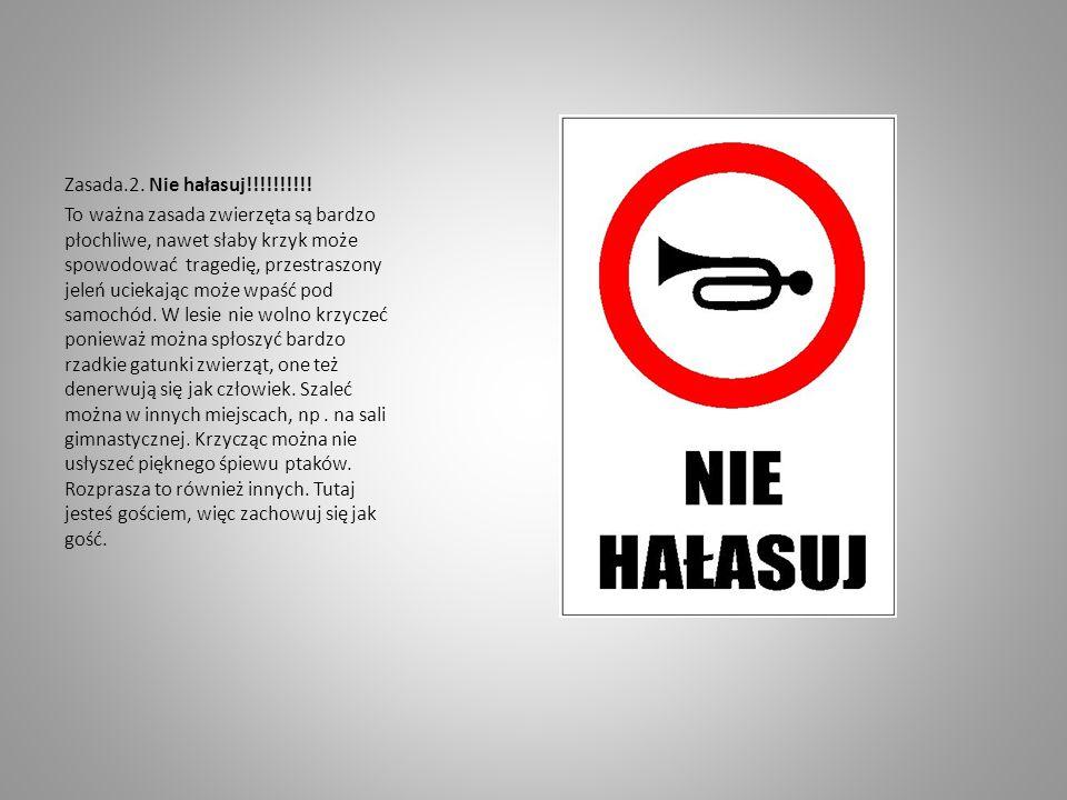 Zasada.2. Nie hałasuj!!!!!!!!!! To ważna zasada zwierzęta są bardzo płochliwe, nawet słaby krzyk może spowodować tragedię, przestraszony jeleń uciekaj