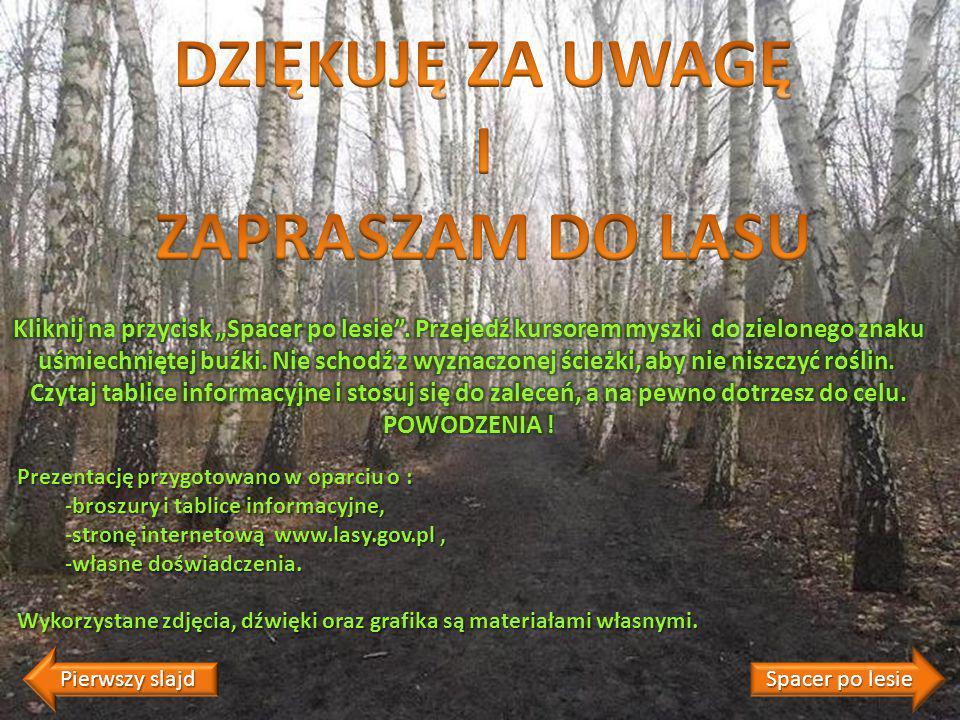 Prezentację przygotowano w oparciu o : -broszury i tablice informacyjne, -stronę internetową www.lasy.gov.pl, -własne doświadczenia.