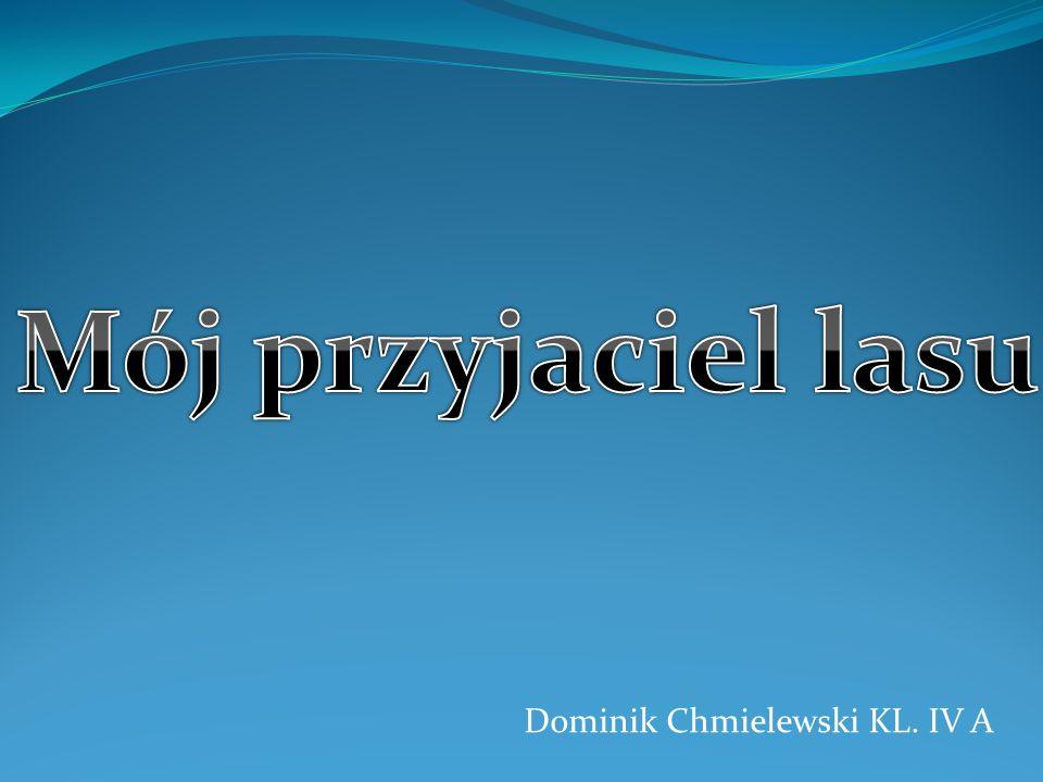Dominik Chmielewski KL. IV A