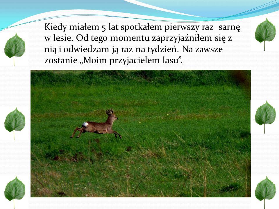 http://polskaprzyroda.pl