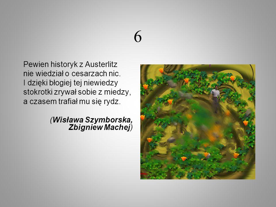 6 Pewien historyk z Austerlitz nie wiedział o cesarzach nic. I dzięki błogiej tej niewiedzy stokrotki zrywał sobie z miedzy, a czasem trafiał mu się r