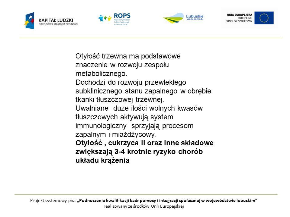 """Projekt systemowy pn.: """"Podnoszenie kwalifikacji kadr pomocy i integracji społecznej w województwie lubuskim realizowany ze środków Unii Europejskiej Otyłość trzewna ma podstawowe znaczenie w rozwoju zespołu metabolicznego."""