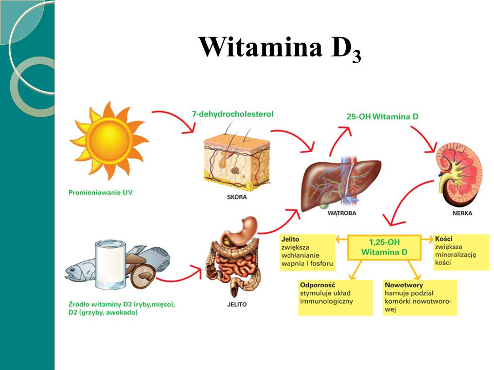 Wpływ niedoboru witaminy D 3