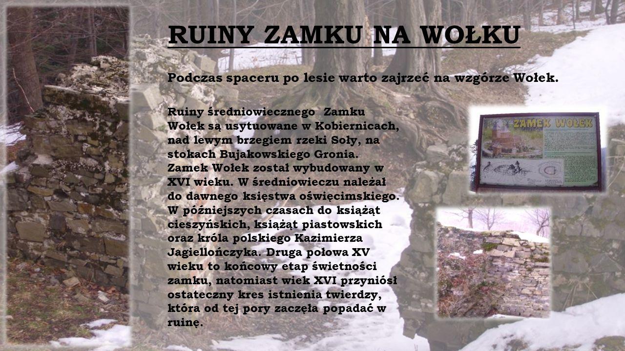 RUINY ZAMKU NA WOŁKU Podczas spaceru po lesie warto zajrzeć na wzgórze Wołek.