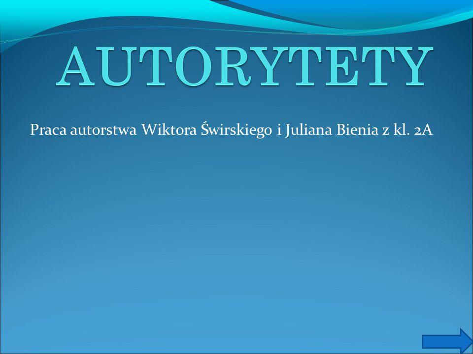 Praca autorstwa Wiktora Świrskiego i Juliana Bienia z kl. 2A
