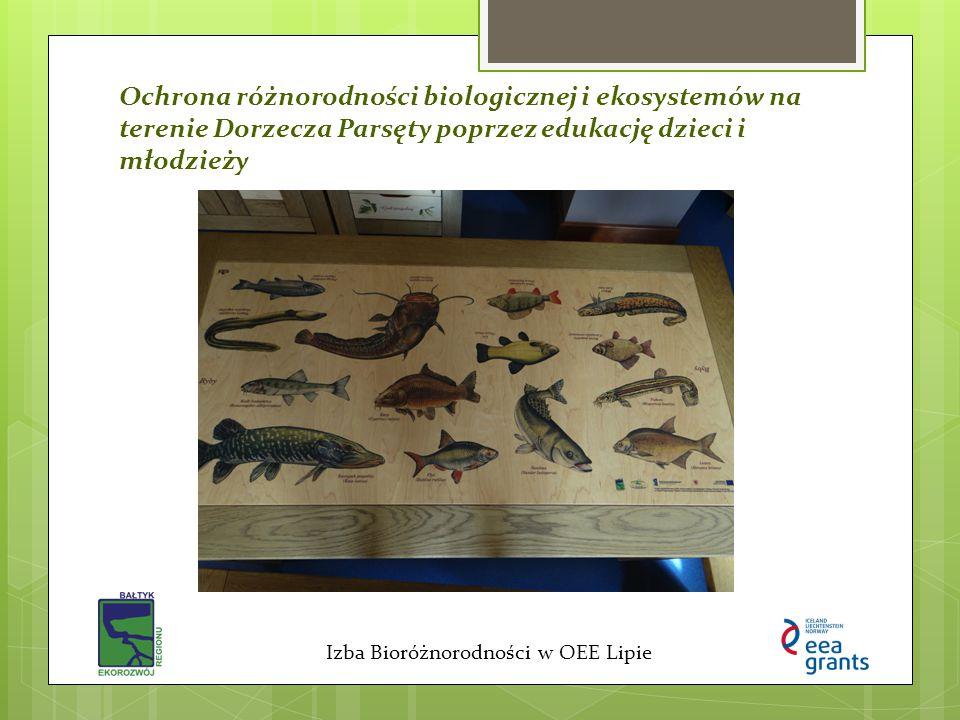 Ochrona różnorodności biologicznej i ekosystemów na terenie Dorzecza Parsęty poprzez edukację dzieci i młodzieży Izba Bioróżnorodności w OEE Lipie