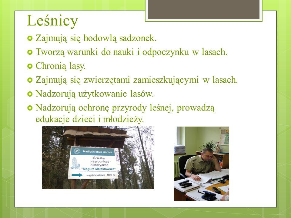 Pracownicy lasu  Wykonują podstawowe prace w leśnictwie z zakresu: nasiennictwa, szkółkarstwa, hodowli, ochrony i użytkowania lasu oraz prace konserwacyjno-naprawcze obiektów i urządzeń leśnych.