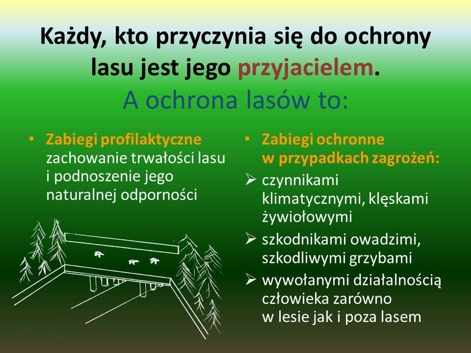 Niebezpieczeństwa dla lasów w Polsce: Inwazje szkodników (np. brudnicy mniszki, barczatki sosnówki, poprocha cetyniaka, grzybów chorobotwórczych) Czyn