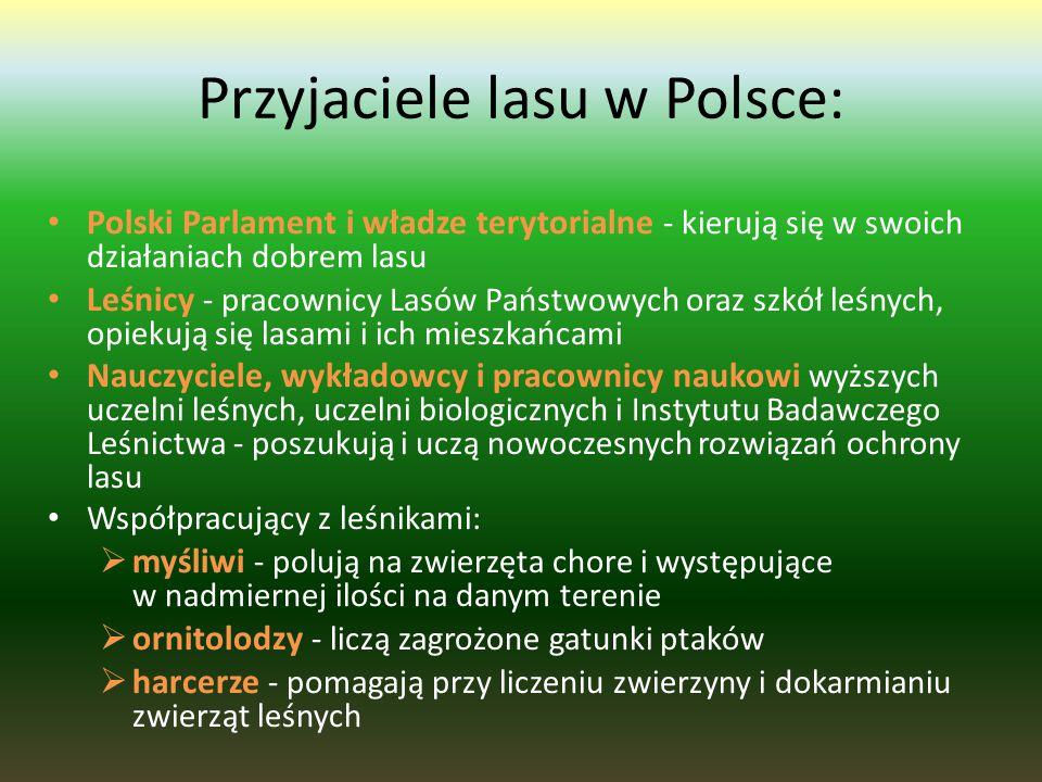 Przyjaciele lasu w Polsce: Polski Parlament i władze terytorialne - kierują się w swoich działaniach dobrem lasu Leśnicy - pracownicy Lasów Państwowych oraz szkół leśnych, opiekują się lasami i ich mieszkańcami Nauczyciele, wykładowcy i pracownicy naukowi wyższych uczelni leśnych, uczelni biologicznych i Instytutu Badawczego Leśnictwa - poszukują i uczą nowoczesnych rozwiązań ochrony lasu Współpracujący z leśnikami:  myśliwi - polują na zwierzęta chore i występujące w nadmiernej ilości na danym terenie  ornitolodzy - liczą zagrożone gatunki ptaków  harcerze - pomagają przy liczeniu zwierzyny i dokarmianiu zwierząt leśnych