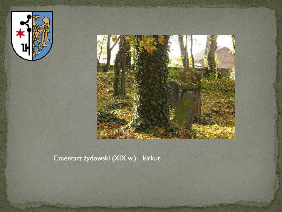 Cmentarz żydowski (XIX w.) - kirkut