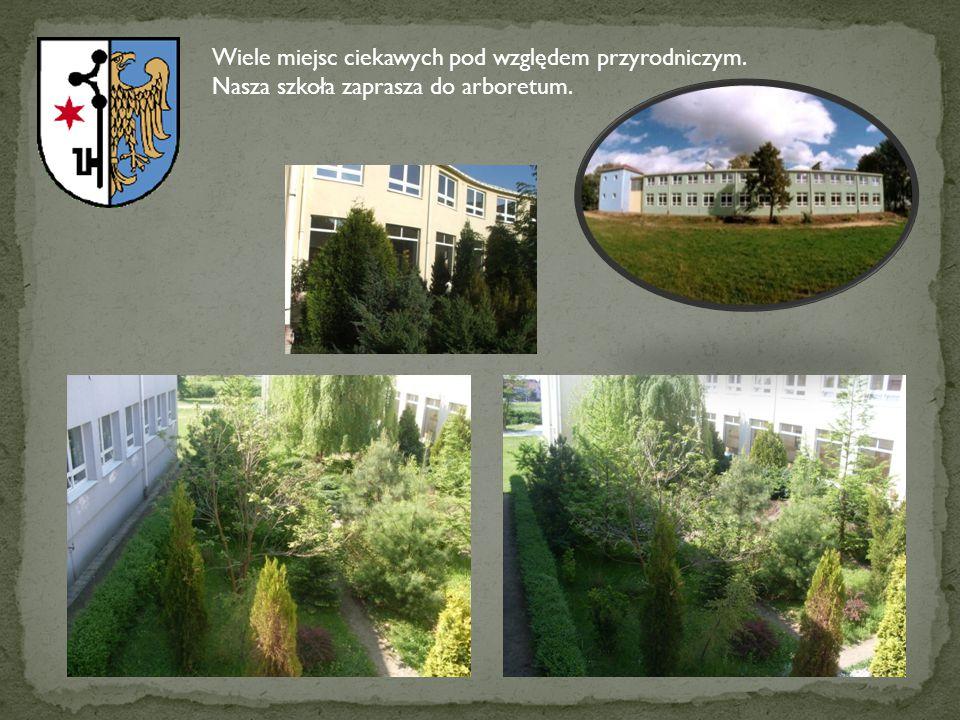 Wiele miejsc ciekawych pod względem przyrodniczym. Nasza szkoła zaprasza do arboretum.