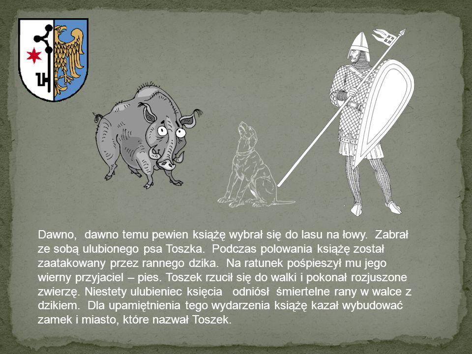 Dawno, dawno temu pewien książę wybrał się do lasu na łowy. Zabrał ze sobą ulubionego psa Toszka. Podczas polowania książę został zaatakowany przez ra