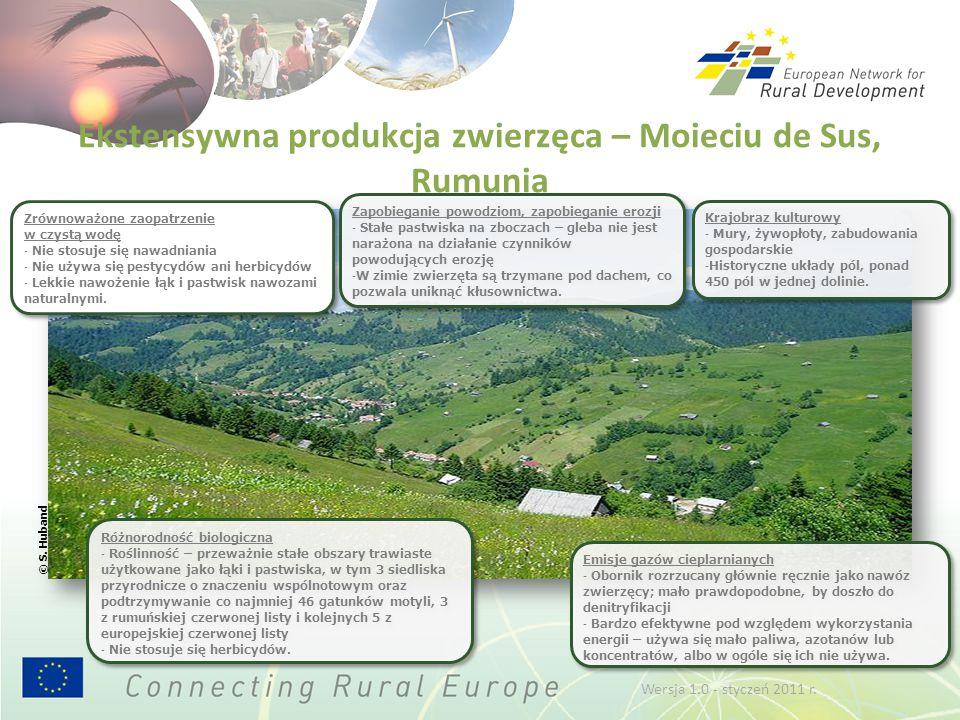 Ekstensywna produkcja zwierzęca – Moieciu de Sus, Rumunia Różnorodność biologiczna - Roślinność – przeważnie stałe obszary trawiaste użytkowane jako łąki i pastwiska, w tym 3 siedliska przyrodnicze o znaczeniu wspólnotowym oraz podtrzymywanie co najmniej 46 gatunków motyli, 3 z rumuńskiej czerwonej listy i kolejnych 5 z europejskiej czerwonej listy - Nie stosuje się herbicydów.