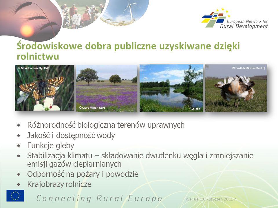 Inwestowanie w obszary wiejskie: sektor rolniczy Stosowne środki obejmują: środek służący modernizacji gospodarstw rolnych środek na rzecz rozwoju infrastruktury środek ukierunkowany na dodawanie wartości do produktów środek wspierający gospodarstwa niskotowarowe W przypadku wykorzystywania ich jako zachęty do dostarczania dóbr publicznych, dotyczy to głównie poprawy: jakości wody, funkcji gleby, dostępności wody, zmniejszenia emisji gazów cieplarnianych Przyczyniają się także do żywotności obszarów wiejskich, bo sprzyjają zwiększeniu konkurencyjności gospodarstw rolnych lub tworzeniu szans dywersyfikacji Wersja 1.0 - styczeń 2011 r.