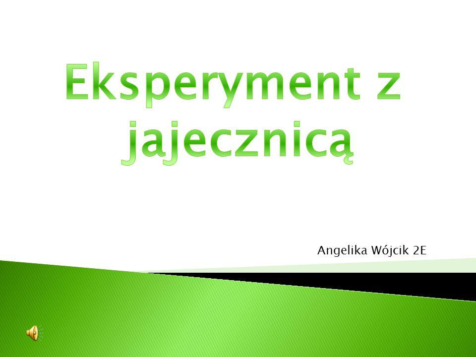 Angelika Wójcik 2E