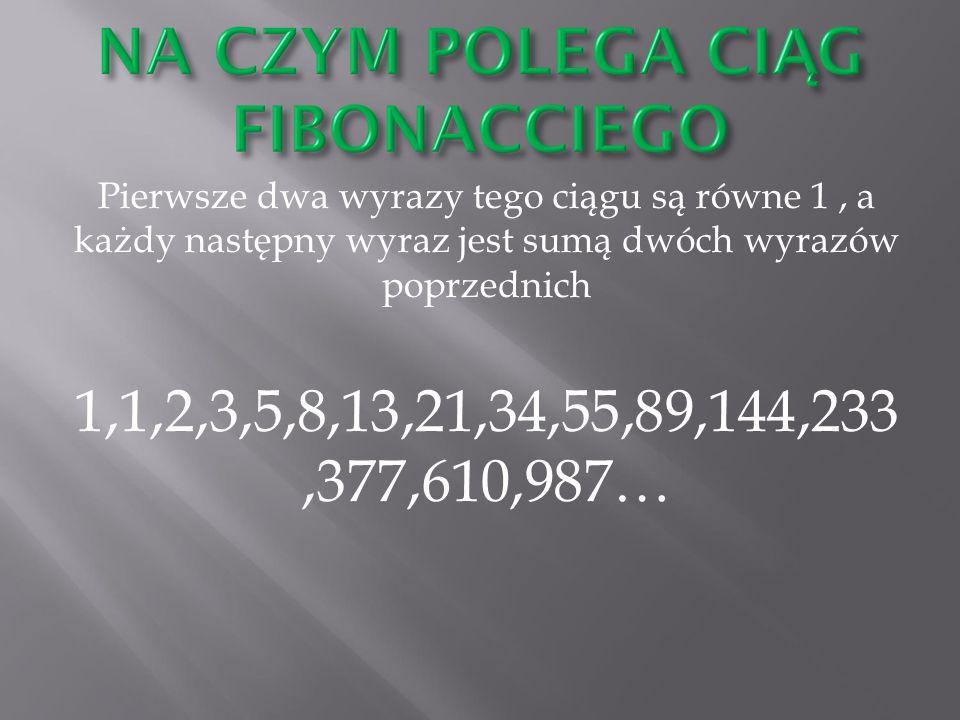 Pierwsze dwa wyrazy tego ciągu są równe 1, a każdy następny wyraz jest sumą dwóch wyrazów poprzednich 1,1,2,3,5,8,13,21,34,55,89,144,233,377,610,987…