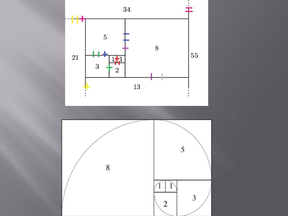 formuła Bineta lub też wzór Eulera-Bineta Jest to prosta rekurencja - każda liczba zależy od dwóch poprzednich - jest ich sumą.