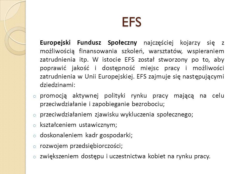 EFS Europejski Fundusz Społeczny najczęściej kojarzy się z możliwością finansowania szkoleń, warsztatów, wspieraniem zatrudnienia itp.