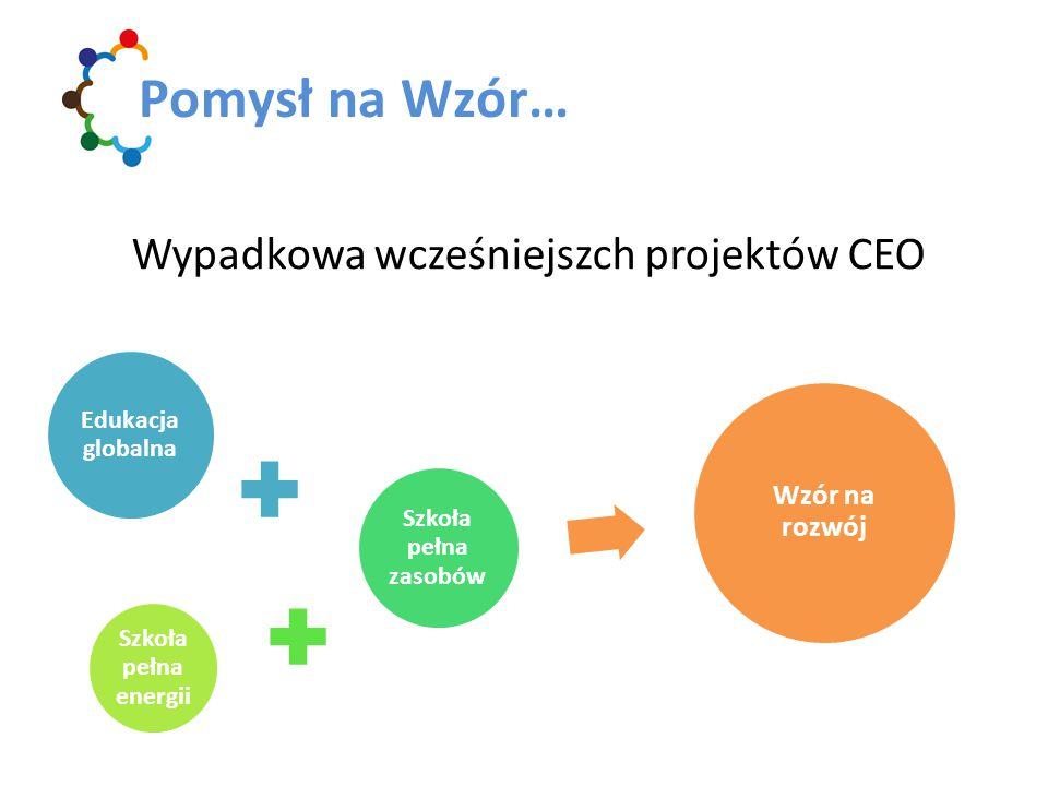 Projekt edukacyjny z młodzieżą Uczestnictwo w warsztatach Uczestnictwo w e-kursie Nasze oczekiwania