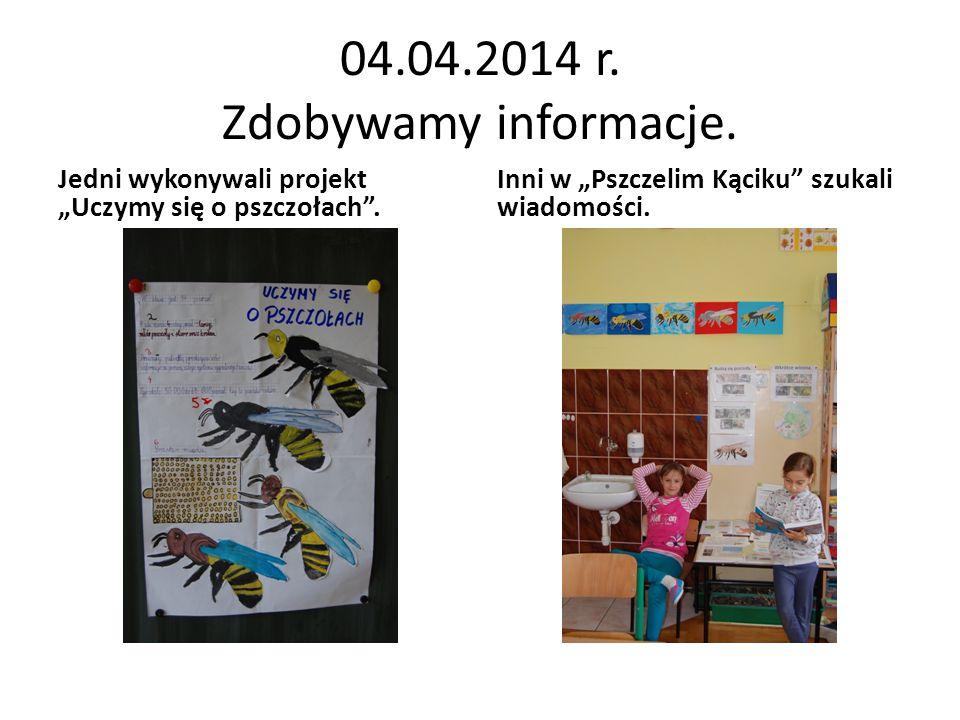 """04.04.2014 r. Zdobywamy informacje. Inni w """"Pszczelim Kąciku"""" szukali wiadomości. Jedni wykonywali projekt """"Uczymy się o pszczołach""""."""