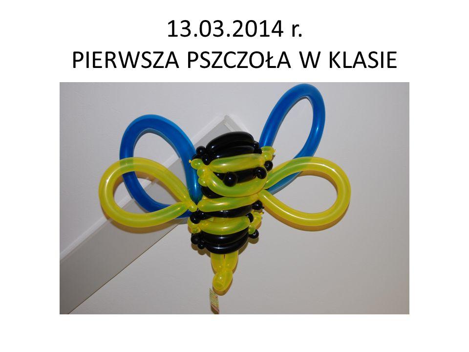 13.03.2014 r. PIERWSZA PSZCZOŁA W KLASIE