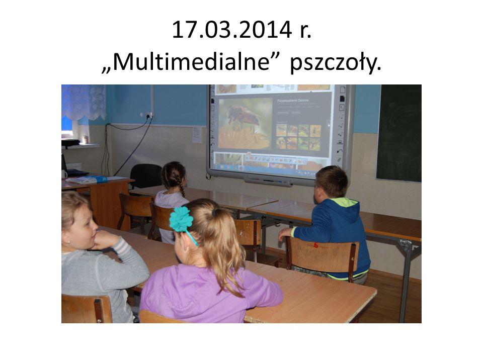 """17.03.2014 r. """"Multimedialne"""" pszczoły."""