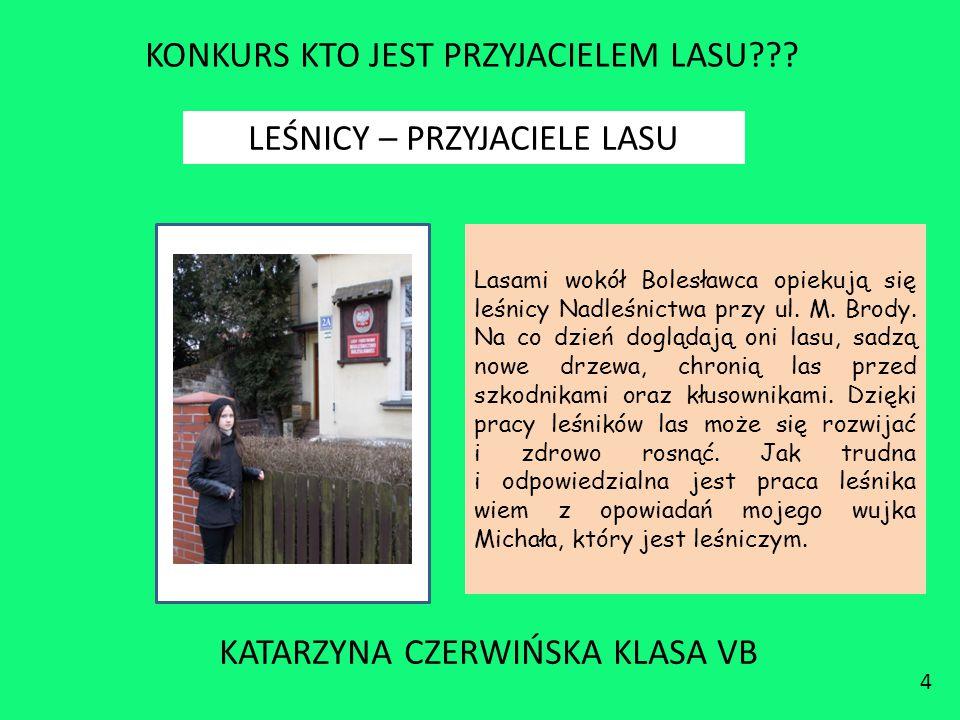 KONKURS KTO JEST PRZYJACIELEM LASU??? KATARZYNA CZERWIŃSKA KLASA VB 4 LEŚNICY – PRZYJACIELE LASU Lasami wokół Bolesławca opiekują się leśnicy Nadleśni