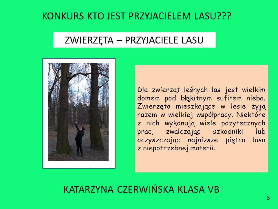 KONKURS KTO JEST PRZYJACIELEM LASU??? KATARZYNA CZERWIŃSKA KLASA VB 6 ZWIERZĘTA – PRZYJACIELE LASU Dla zwierząt leśnych las jest wielkim domem pod błę