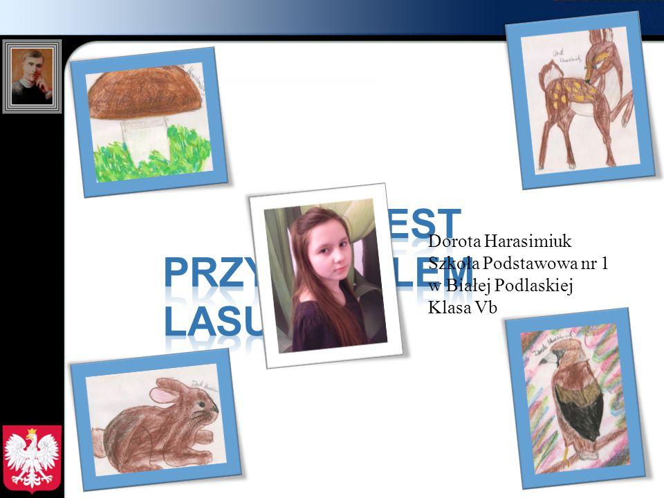 Dorota Harasimiuk Szkoła Podstawowa nr 1 w Białej Podlaskiej Klasa Vb