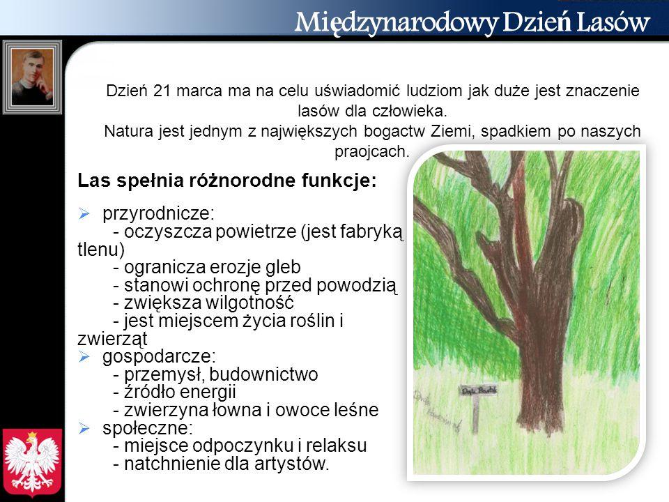 Mi ę dzynarodowy Dzie ń Lasów Las spełnia różnorodne funkcje:  przyrodnicze: - oczyszcza powietrze (jest fabryką tlenu) - ogranicza erozje gleb - sta