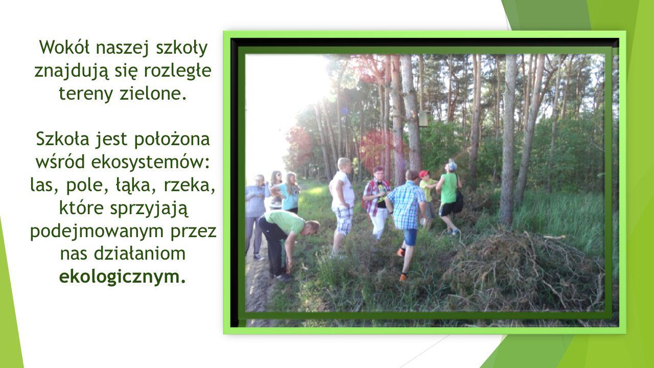 Wokół naszej szkoły znajdują się rozległe tereny zielone. Szkoła jest położona wśród ekosystemów: las, pole, łąka, rzeka, które sprzyjają podejmowanym