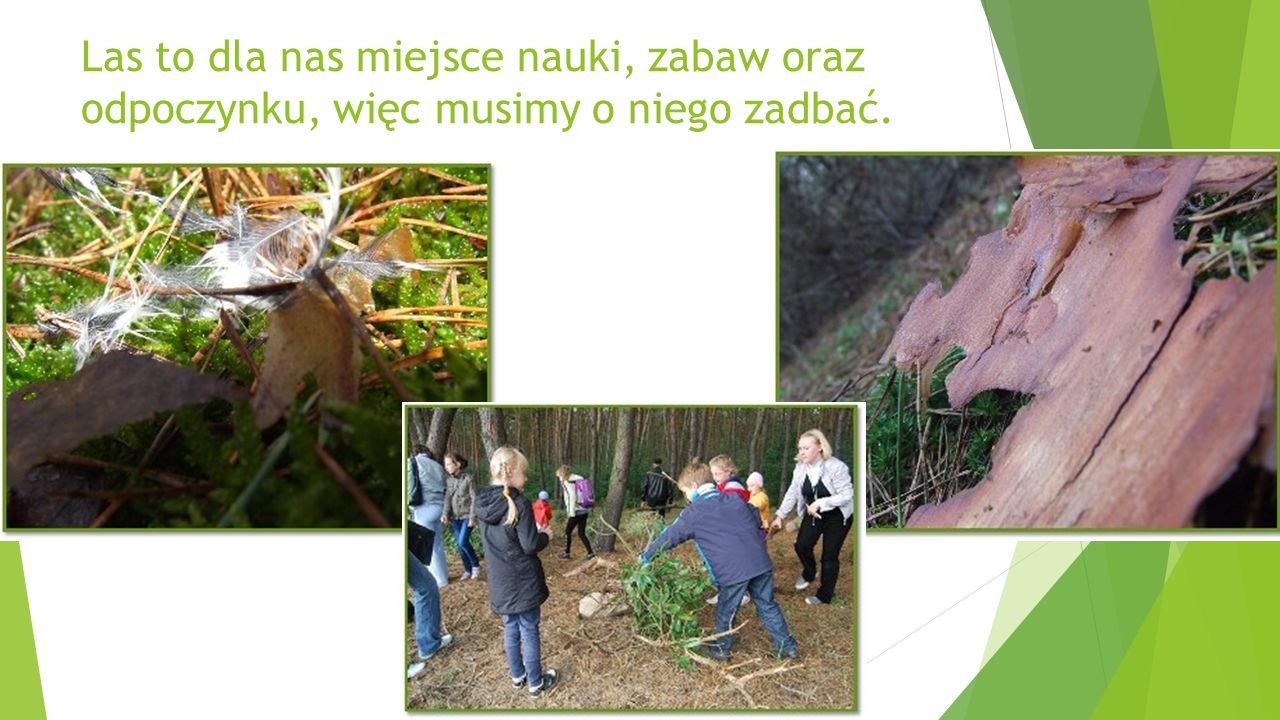 Las to dla nas miejsce nauki, zabaw oraz odpoczynku, więc musimy o niego zadbać.