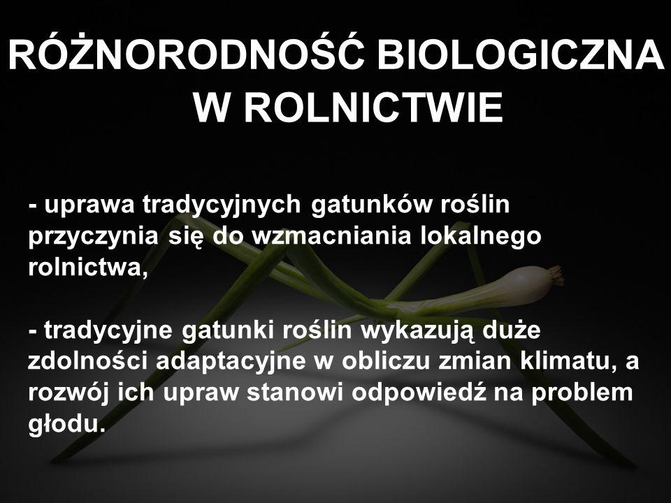 ROLNICTWO W POLSCE - 90% gospodarstw do 15 ha, które stanowią 50% obszarów rolnych, - nadal cenione za uprawę rodzimych, tradycyjnych odmian, na które rośnie popyt w kraju i zagranicą, - model rolnictwa GMO jest zagrożeniem dla rozdrobnionego, zróżnicowanego rolnictwa w Polsce.