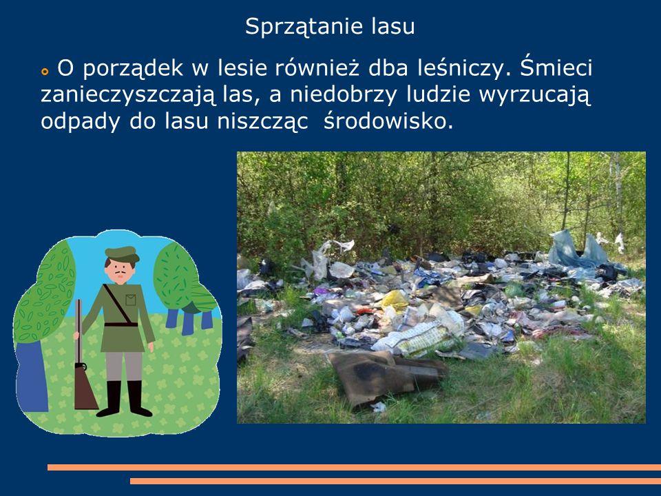 Sprzątanie lasu  O porządek w lesie również dba leśniczy. Śmieci zanieczyszczają las, a niedobrzy ludzie wyrzucają odpady do lasu niszcząc środowisko
