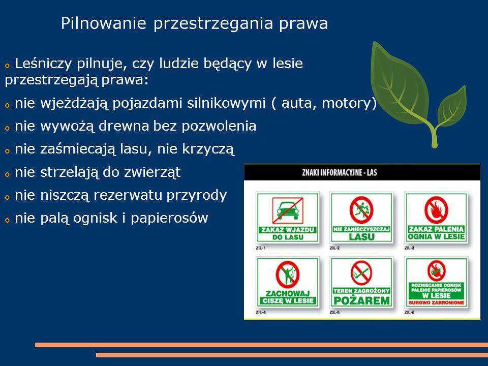 Pilnowanie przestrzegania prawa  Leśniczy pilnuje, czy ludzie będący w lesie przestrzegają prawa:  nie wjeżdżają pojazdami silnikowymi ( auta, motor