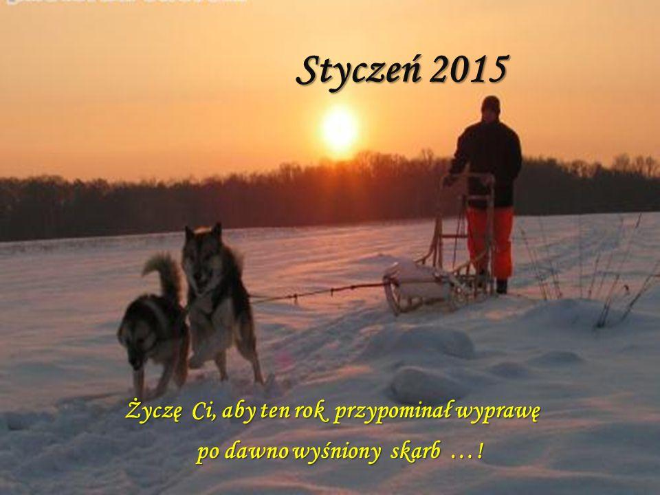 Styczeń 2015 Życzę Ci, aby ten rok przypominał wyprawę po dawno wyśniony skarb ….