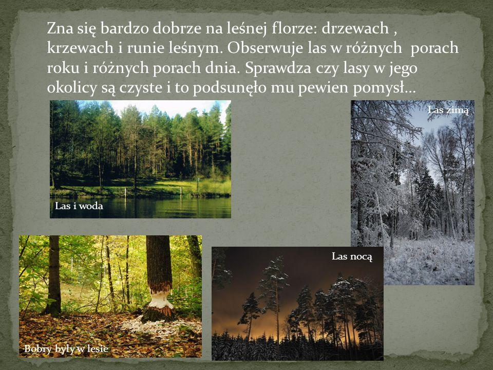 Zna się bardzo dobrze na leśnej florze: drzewach, krzewach i runie leśnym.