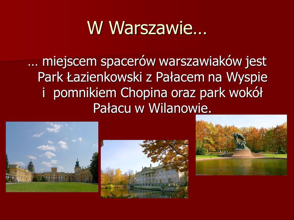 Najstarsze miasta Polski… Gniezno – pierwsza stolica Polski.