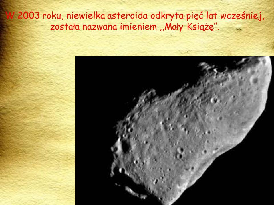 W miejscowości Hakone istnieje Muzeum Małego Księcia, w którym można zobaczyć rzeźby przedstawiające między innymi: asteroidę B 612, Latarnika i Małego Księcia.