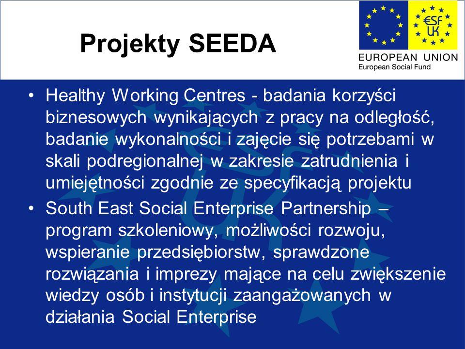 Projekty SEEDA Healthy Working Centres - badania korzyści biznesowych wynikających z pracy na odległość, badanie wykonalności i zajęcie się potrzebami w skali podregionalnej w zakresie zatrudnienia i umiejętności zgodnie ze specyfikacją projektu South East Social Enterprise Partnership – program szkoleniowy, możliwości rozwoju, wspieranie przedsiębiorstw, sprawdzone rozwiązania i imprezy mające na celu zwiększenie wiedzy osób i instytucji zaangażowanych w działania Social Enterprise