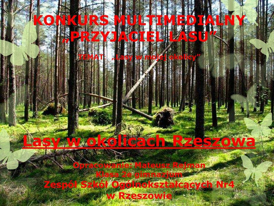 o 9 km na północ od Rzeszowa rozciąga się obszar leśny Bór z rezerwatem przyrody o 14 km na południe od Rzeszowa dojedziemy do obszaru leśnego Przylasek Oba kompleksy leśne są niezmiernie ważne dla mieszkańców Rzeszowa.