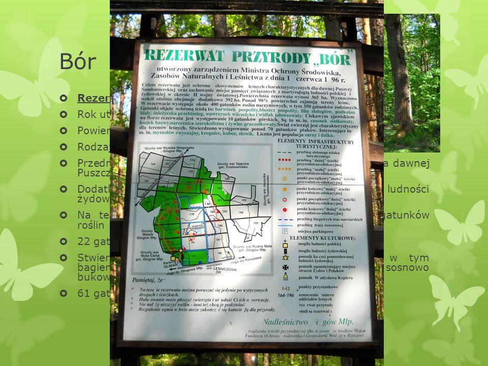 Ścieżki przyrodniczo-edukacyjne  Na terenie kompleksu leśnego wytyczono dwie ścieżki przyrodniczo-edukacyjne.