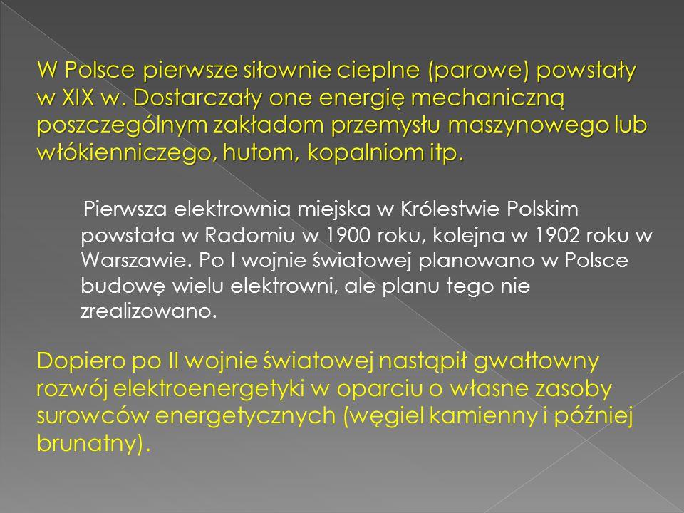 Pierwsza elektrownia miejska w Królestwie Polskim powstała w Radomiu w 1900 roku, kolejna w 1902 roku w Warszawie. Po I wojnie światowej planowano w P