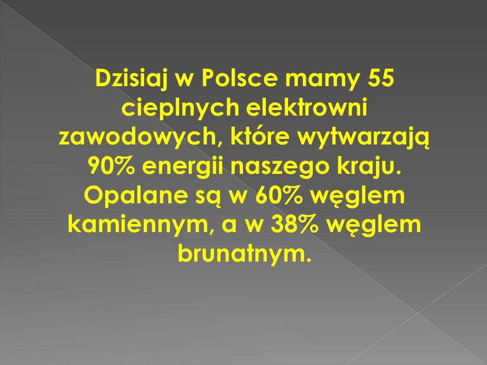 Dzisiaj w Polsce mamy 55 cieplnych elektrowni zawodowych, które wytwarzają 90% energii naszego kraju. Opalane są w 60% węglem kamiennym, a w 38% węgle