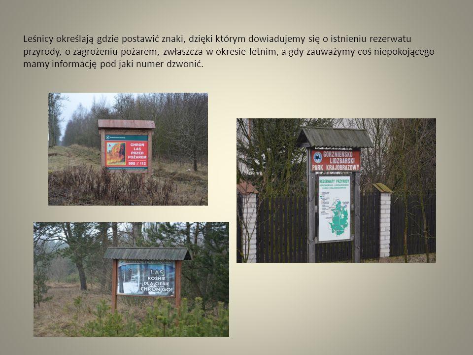Leśnicy określają gdzie postawić znaki, dzięki którym dowiadujemy się o istnieniu rezerwatu przyrody, o zagrożeniu pożarem, zwłaszcza w okresie letnim