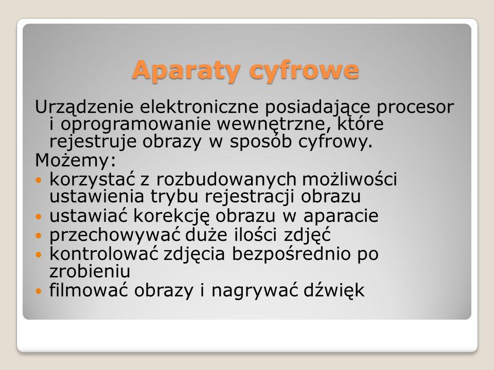 Palmtopy (ang.