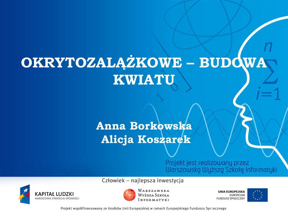2 OKRYTOZALĄŻKOWE – BUDOWA KWIATU Anna Borkowska Alicja Koszarek