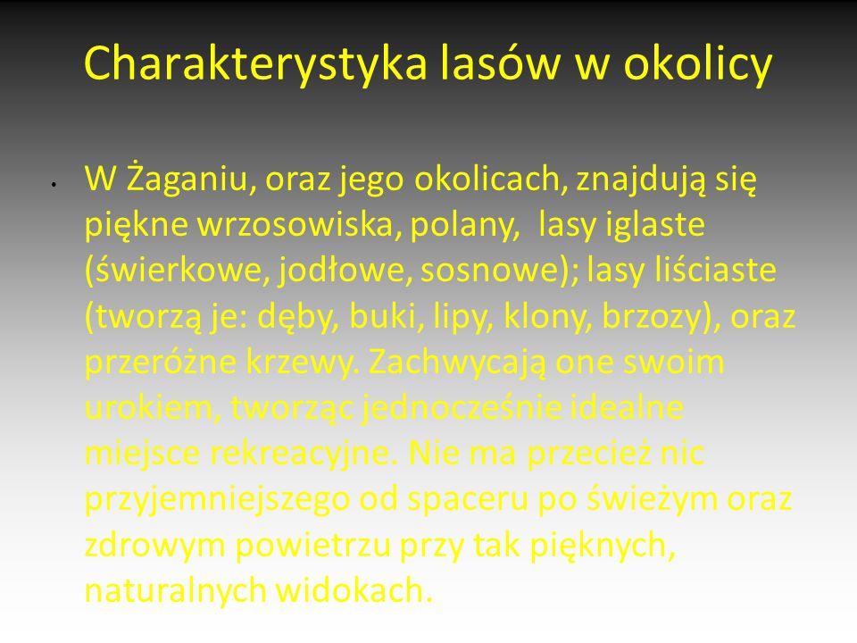 Charakterystyka lasów w okolicy W Żaganiu, oraz jego okolicach, znajdują się piękne wrzosowiska, polany, lasy iglaste (świerkowe, jodłowe, sosnowe); l