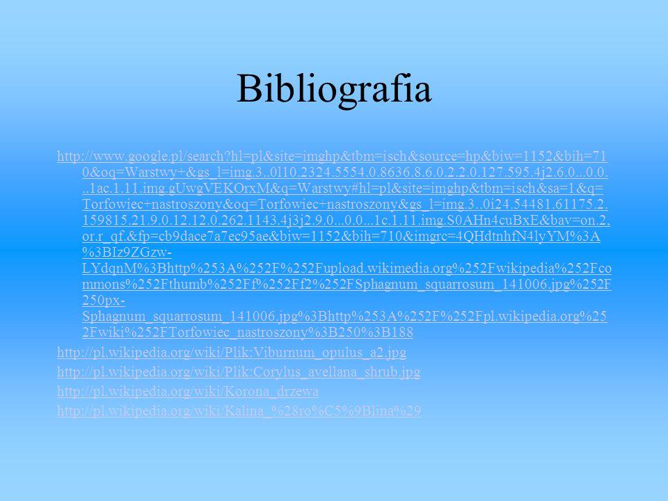 Bibliografia http://www.google.pl/search?hl=pl&site=imghp&tbm=isch&source=hp&biw=1152&bih=71 0&oq=Warstwy+&gs_l=img.3..0l10.2324.5554.0.8636.8.6.0.2.2